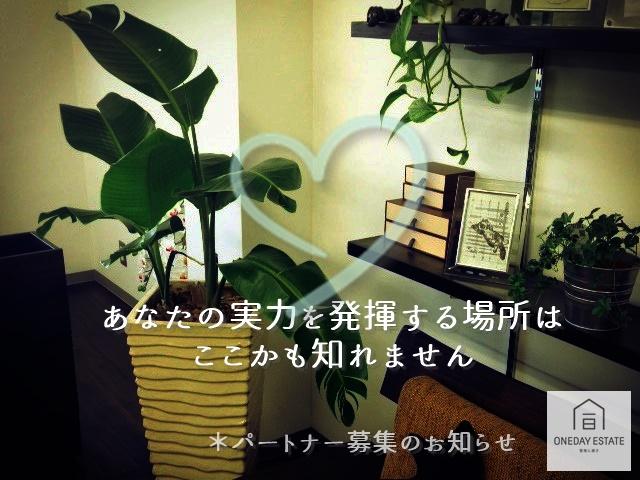 oneday室内-crop